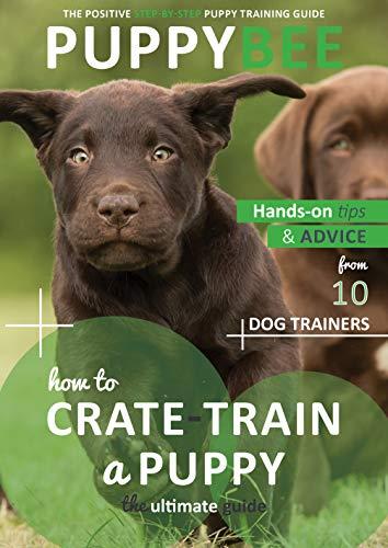Best Crate Training Methods