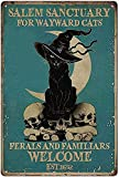 Oddss Retro Funny Pamplona Cartel de chapa de metal,Suitable for Home Bar Hotel Office Cafe Wall Decor Poster Gifts for Women Men Friends 8x12 Inch