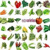 Jardin Légumes Vert Biologique Chinois Graines 40 Variétés Différentes Qté 22000+ pour Planter Porte Extérieure pour Cuisiner Plat Soupe Goût Bon Délicieux 100% Sans OGM