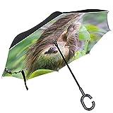 ALAZA Wild Sloth Hanging Tree Jungle Forest Panama invertito Ombrello Doppio Strato Antive...