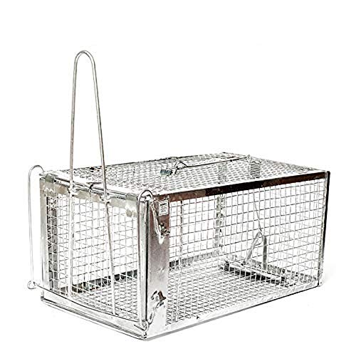 AB Traps Quality Live Animal Humane Trap Catch and Release Rats Mouse Mice Rodents Trampa para Ratones, Voles and Similar Sized Pests Safe and Effective Small size