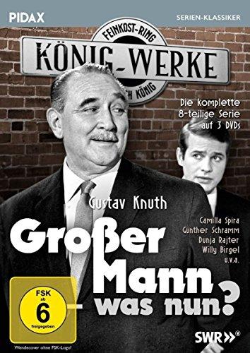Großer Mann - was nun? / Die komplette 8-teilige Kultserie mit Gustav Knuth (Pidax Serien-Klassiker) [3 DVDs]