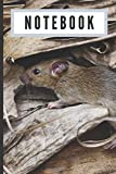 Notebook: Rat - a handy ruled composition book that's a great gift idea
