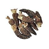 NATURAURA - Dried Morel Mushrooms (Morchella Conica) Gourmet Morel Mushrooms (16 Ounces)