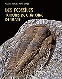 Les fossiles: Témoins de l'histoire de la vie