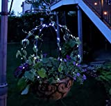 Scroll Trellis Topiary Frame and Indoor/Outdoor Solar LED String Lights with a Battery Backup (1 Black, 1 Set Bright White Solar Lights)