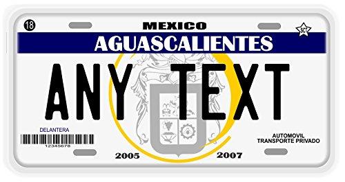 Placas Aguascalientes License Plate