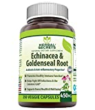 Herbal Secrets Echinacea & Goldenseal Root - 450 Mg 500 Caps with Echinacea Purpurea, Goldenseal, Burdock Root & Cayenne Pepper