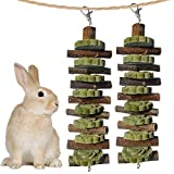 Bunny Chew Toys for Teeth Grinding, Chinchilla Treats Organic Bamboo Sticks Natural Apple Wood Branches for Rabbits Guinea Pigs Hamsters (Apple Wood Sticks+Alfalfa Cakes)
