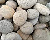 Buff/Ivory Mexican Beach Pebbles 20 Pounds 3' - 5' Decorative Stones Smoothed Unpolished Stones for Gardening, Landscaping, Aquascaping
