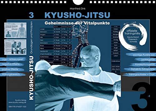 Kyusho-Jitsu - Geheimnisse der Vitalpunkte: Trainingshilfe 3