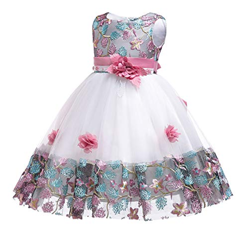 Toddler Dress Birthday Pageant Party Event Baby Prom Tutu Lace Dresses 12M 18 Months Years (Pink,18M)