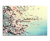 Sinus Art Wandbild 120x80cm Naturfotografie – Rosa