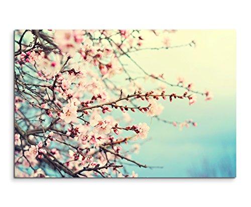 Sinus Art Wandbild 120x80cm Naturfotografie – Rosa Kirschblüten auf Leinwand für Wohnzimmer, Büro, Schlafzimmer, Ferienwohnung u.v.m. Gestochen scharf in Top Qualität