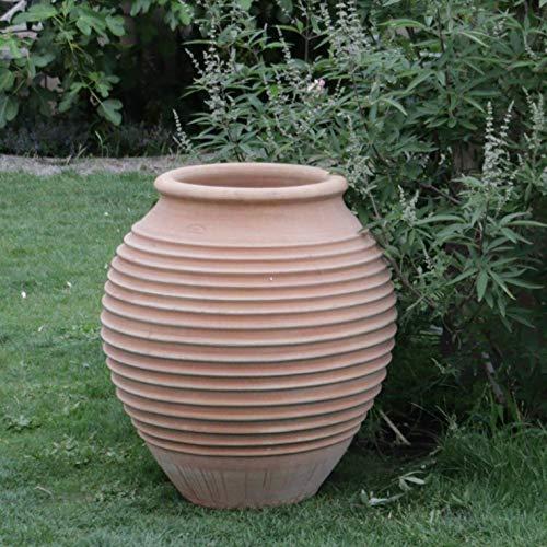 Kreta-Keramik | große hochwertige terrakotta Amphore | 80 cm | absolut frostfest | Garten Außenbereich, mediterrane Deko, Ficus