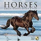 Horses: Grace, Beauty, Spirit & Fire