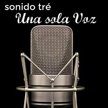 Una Sola Voz