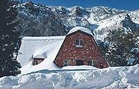 HDJSCTWCIジグソーパズル500ピース-雪の自然