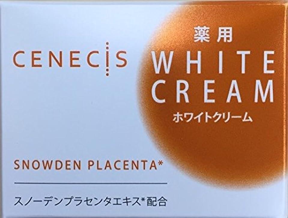 タイプライターヒロイックマイクスノーデン セネシス 薬用ホワイトクリーム 40g