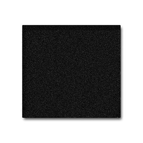 Plateau de service en granit noir rare - Pierre naturelle unique - Carré, massif - Dimensions : 28 x 28 x 2 cm - Poids : env. 6 kg