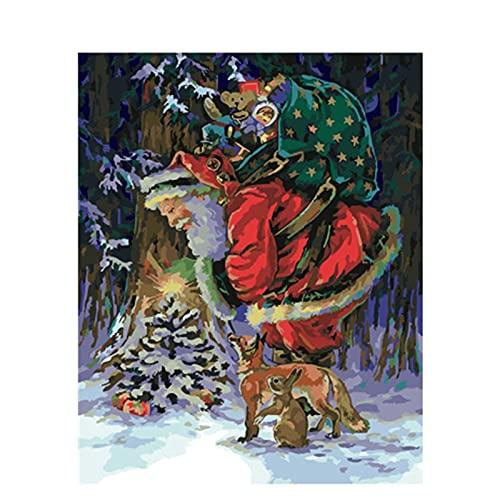 Pintura por número Navidad Gato Animal Cploring Pinturas acrílicas hechas a mano enmarcadas en lienzo Imágenes al óleo Decoración del hogar W13 40x50cm