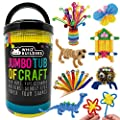 Arts and Crafts Supplies Craft Kits Set for Kids & Toddlers – Pipe Cleaners Pom poms Googly Eyes Beads – Kindergarten Preschool Homeschool Learning School Art Activities Games All Ages & Years Olds by WhizBuilders