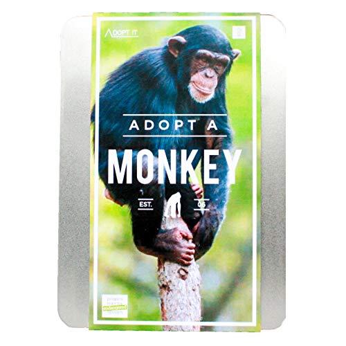 Gift Republic Coffret cadeau adoptez un singe en anglais