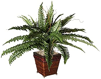 Nearly Natural 23in Boston Fern with Wicker Basket Silk Artificial plant Green