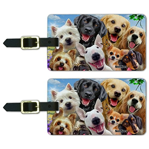 Funny dogs group photo luggage tag set
