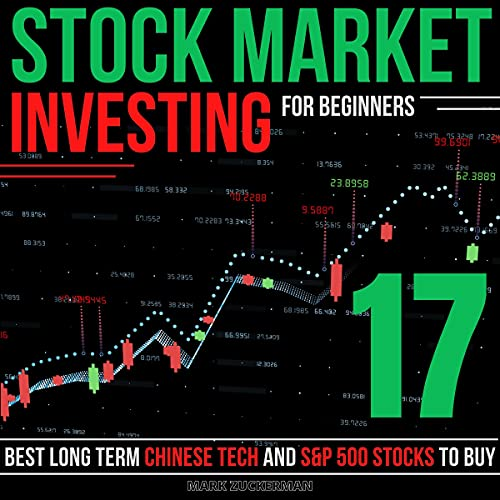 Stock Market Investing for Beginners: 17 Best Long Term Chinese Tech and S&P 500 Stocks to Buy cover art