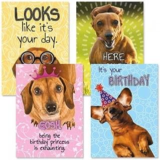 Dachshund Birthday Greeting Cards - Set of 8 (2 of Each Design) 5