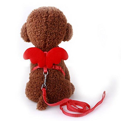 UEETEK Cane Guinzaglio Cablaggio Regolabile Animale Domestico Gatto Cani Guinzaglio Collare per Medio Piccolo - Taglia S (Rosso)