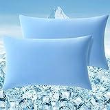 Elegear Funda de Almohada Enfriamiento 2 Set, Funda Protege Almohada con Fibra ARC-Chill Japonesa de Primera Calidad Almohada Protege Súper Suave Transpirable (Azul,50*75cm)