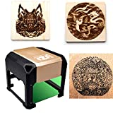 laser engraving machine Laser Engraver Printer 3000mW Mini desktop laser engraver machine DIY Logo laser engraver (Gold)