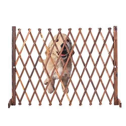 Zaun, Upgrade anheblichen Gitterplatten, Holz ausdehnend Zaun-Gatter Trellis für Kletterpflanzen im Freien dekorativ (Size : 56x160cm)