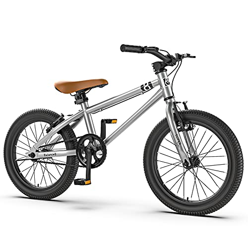 ALUNVA Children Kid 16 20inch Boy Girl Mountain Bike,Variable Speed Bicycle,Cross-country Bike,One Speed Portable Bicycle,Riding Bicycle-Silver plus accessories 20inch