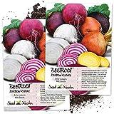 Seed Needs, Rainbow Beet Mixture (Beta vulgaris) Twin Pack of 600...