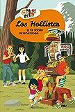 Los Hollister y el ídolo misterioso (Los Hollister 5)