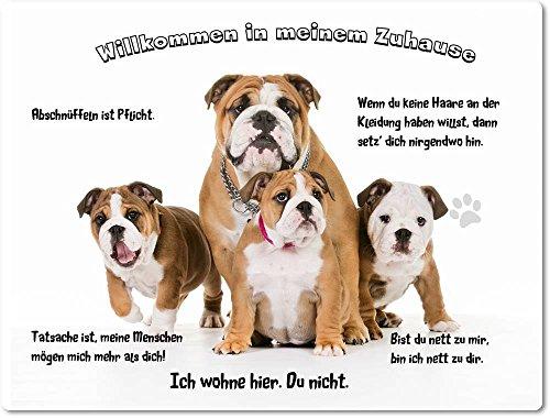 Merchandise for Fans Blechschild/Warnschild/Türschild - Aluminium - 15x20cm - - Willkommen in Meinem Zuhause - Motiv: Englische Bulldogge Familie - 05