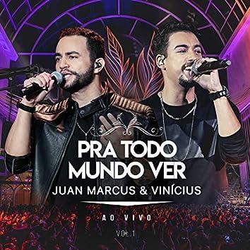 Pra Todo Mundo Ver (Ao Vivo Em São José Do Rio Preto / 2019 / Vol. 1)