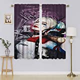 lacencn Harley Quinn – Suicide Squad – Panel de cortina para ventana de sala de estar, bajo consumo, bajo consumo, para sala de estar, 63 x 45 cm