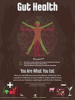 Exam Room Gut Health Poster - Microbiome Poster 12x18