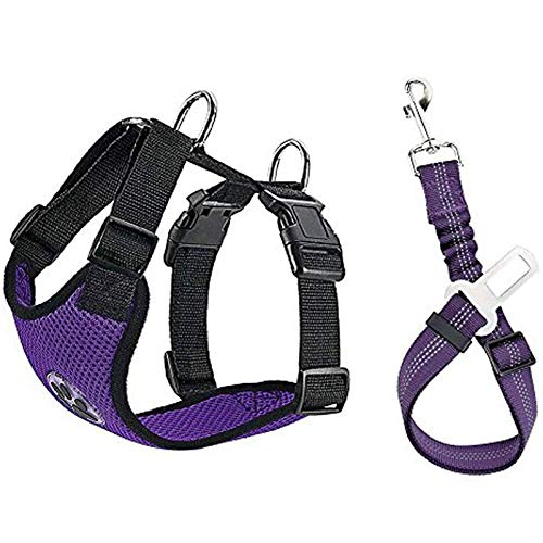 Extra Large Dog Seat Belt Harness
