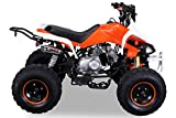 Kinder Quad 125 ccm orange/weiß Speedy - 6