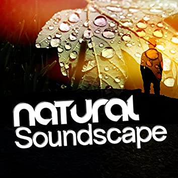 Natural Soundscape