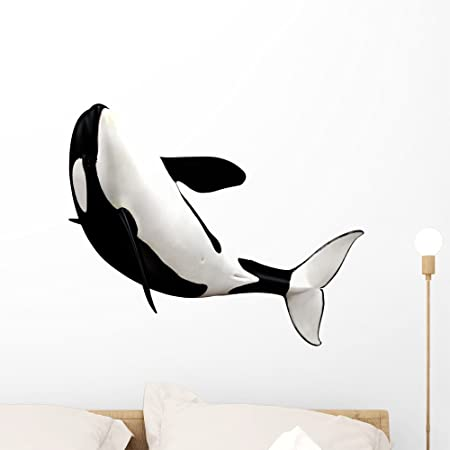 Wallmonkeys Orca Killer Whale Wall Decal Peel And Stick Animal Graphics 18 In H X 18 In W Wm28455 Home Kitchen