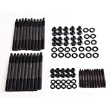 XtremeAmazing 12-Point Cylinder Gasket Head...