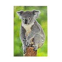 1000ピース ジグソーパズル コアラ 木の上 写真 ジグソーパズル 木製パズル Puzzles 50x75cm(6歳以上が適しています)
