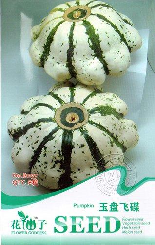 Rare Erbstück UFO Patty Pan Zucchini Weiß Grün-Streifen-Sommer-Kürbis-Samen, Originalverpackung, 8 Samen / Pack, Zierkürbisse
