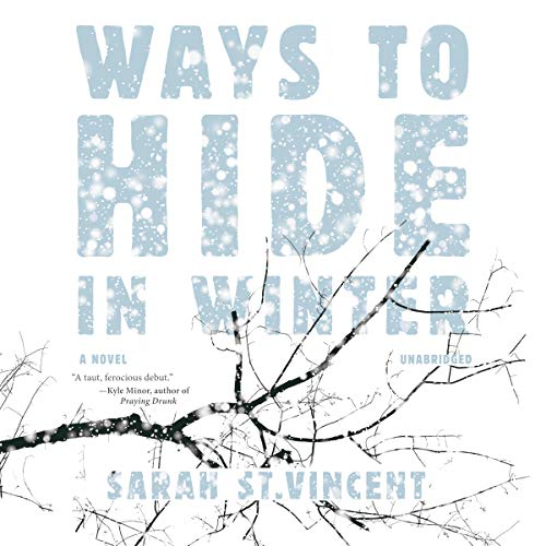 Ways to Hide in Winter audiobook cover art